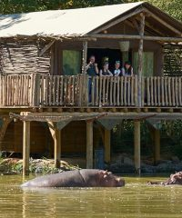 Les Lodges du Pal – Zoo – Parc d'attractions