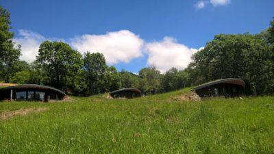 Les bulles d'herbes